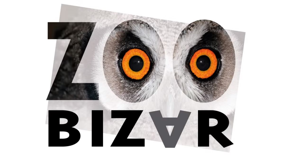 Zoobizar thumbnail